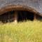 Viking House & Garden
