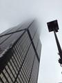 Cool November Morning, Chicago, Willis Tower