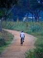 Lone biker