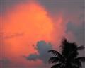 Tropical Dusk