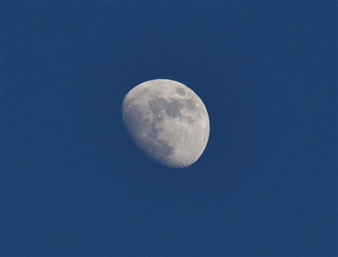 Moon, late afternoon