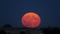 Fall is a great time to photograph the moon, here it is rising over Calgary.  Such a gorgeous sight