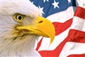 American Bald Eagle against Flag, Composite