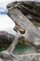 Pyramid Lake Log