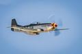 P-51 Mustang-9456