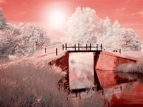 IR bridge.jpg