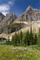 Glacier National Park 2011-46