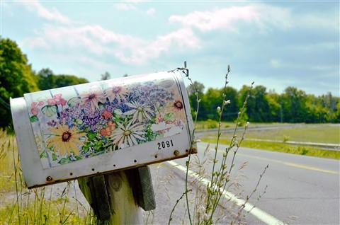 Box Full of Flowers