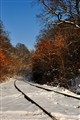 Snowy Railroad