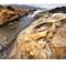 Point Lobos_ California