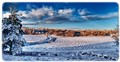 Farmland snow
