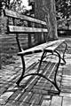 b&w bench