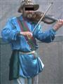 Violinest