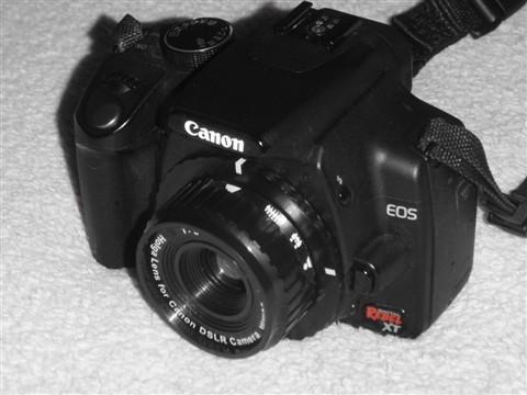 XT/350D with Holga lens