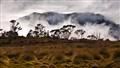 Tasmania Cradel mountain walk