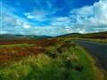 Sally Gap, Wicklow Mountain National Park, Ireland