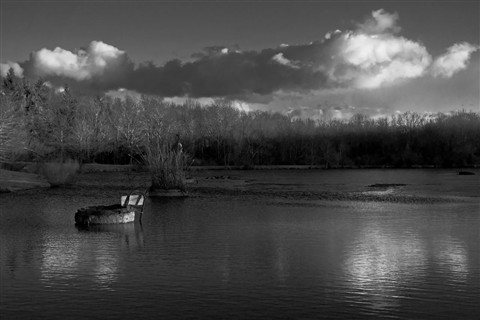 Local Landscape:  Winter 2013