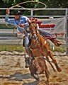 Rodeo Chase