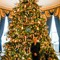 White House Xmas Tree 2
