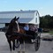 Mennonite Brothers: Getting instructions from their father, of how to drive their rig.