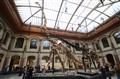 entrance hall Natural history museum, Berlin