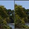 Comparison_40mm_f5.6_Left_Pana14-45_Right_Oly12-40
