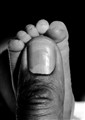 New Foot