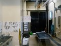 Marine mammal morgue