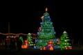 A Lantern Christmas Tree-0922