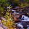 Colors Of Geveva Creek
