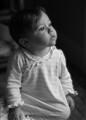Light of Innocence