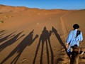 Camel Trekking in the Morrocan Sahara