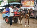 Bus driver at Lombok market