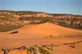 Corel Pink Sand Dunes State Park UT