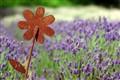 Rusty Flower