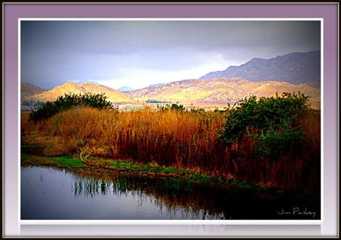 hemet wetland