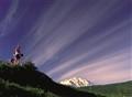 Will_Denali Natl. Park,Alaska