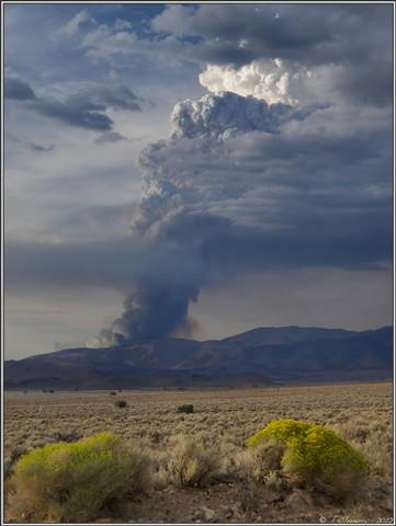 Nevada Brushfire