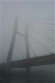 Fog - river Wisła