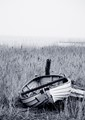 Abandoned rowboat on Møn, Denmark.
