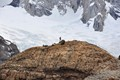 A climber near Fitz Roy mountain