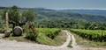 Italian Wine Road