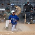 Dust Up at Home Plate