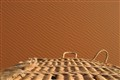 Balloon basket and dunes