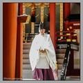 Shinto clergyman