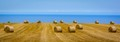 North Youkshire Hay Bales