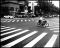 Shanghai Crossing