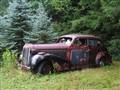 1940s Oldsmobile resting in peace