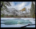 Yosemite Meadow Lake - 7980