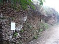 Old Mosque wall